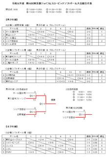 2019年第16回東京都ジョイフルスローピッチ大会-2.jpg