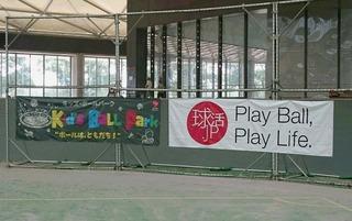2)パークドーム熊本内、風景.JPG