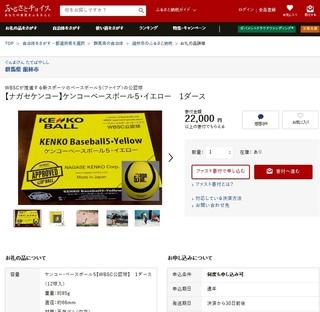 ふるさとチョイスBB5.jpg