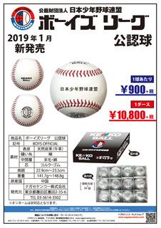 ケンコー硬式野球ボールシリーズ広告2.jpg