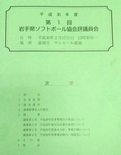 岩手県ソフトボール協会評議員会資料.JPG